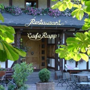Hotel Pictures: Hotel Restaurant Café Rapp, Königsfeld im Schwarzwald