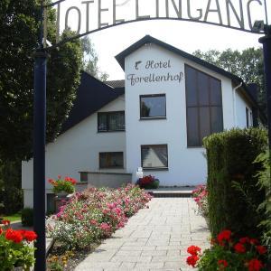 Hotelbilleder: Hotel Forellenhof, Detmold