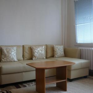 Hotel Pictures: Apartman Labska, Brno