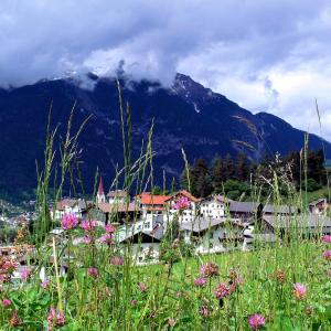 Hotel Pictures: Gasthof Alpenblick, Tobadill