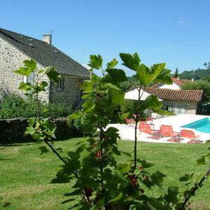 Hotel Pictures: Gîte Rural Giou de Mamou, Giou-de-Mamou