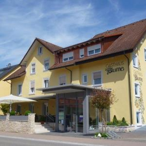 Hotel Pictures: Gasthof Blume, Hausach