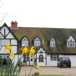 Hotel Pictures: Sunny Cottage, Maidenhead