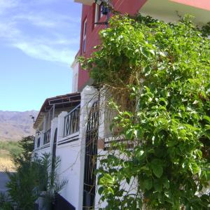 Hotel Pictures: Yria Residencial, Porto Novo
