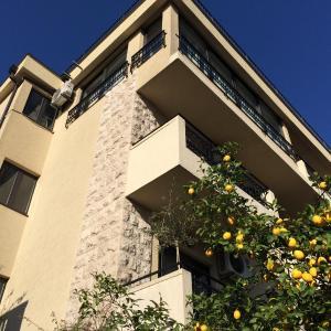 Zdjęcia hotelu: Studios Bono, Budva