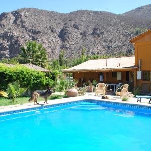 Фотографии отеля: Hostal Luz del Valle, Vicuña