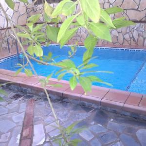 Hotel Pictures: Casa Rural Huerta San Miguel, El Bosque