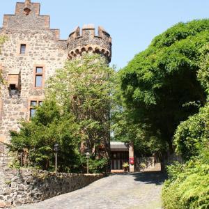 Hotelbilleder: Hotel Burg Staufenberg, Staufenberg
