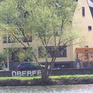 Hotel Pictures: Ferienwohnungen Goldlay + Rosenberg, Oberfell