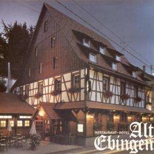 Hotel Pictures: Hotel Alt Ebingen, Albstadt