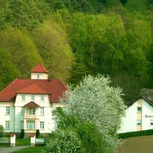 Hotelbilleder: Pension am Walde, Beerfelden