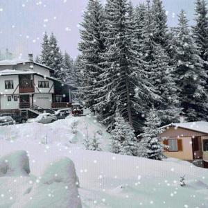 Hotellbilder: The Old Mountain House, Momchilovtsi