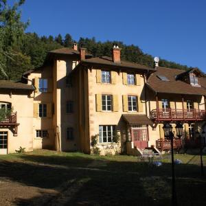 Hotel Pictures: Château de Ronziere, Saint-Forgeux