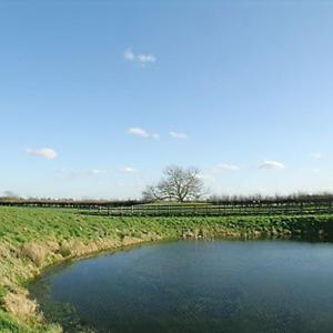 Hotel Pictures: Lapwing, Crooklands