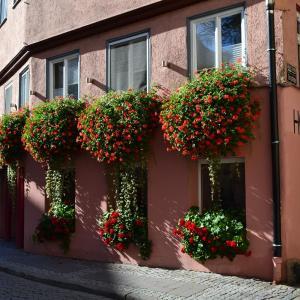 Hotel Pictures: Hotel Hospiz, Tübingen