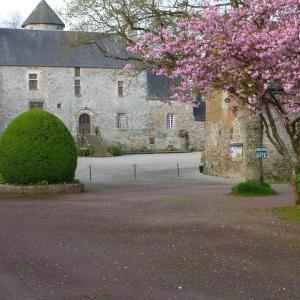 Hotel Pictures: Manoir De La Foulerie, Ancteville