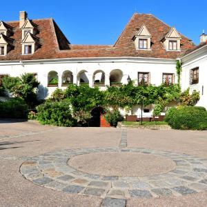 Foto Hotel: Renaissancehotel Raffelsberger Hof B&B, Weissenkirchen in der Wachau