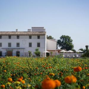 Hotel Pictures: La Mozaira, Alboraya