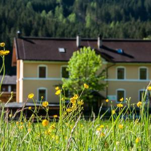 Φωτογραφίες: Gabis Lodge, Krimml