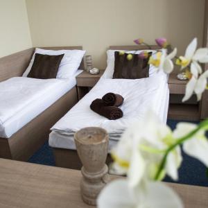 Hotel Pictures: Penzion s wellness Uherské Hradiště, Uherské Hradiště