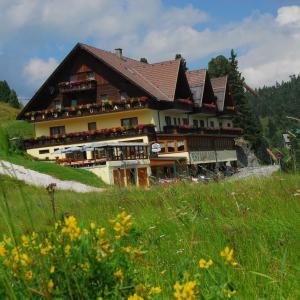 Zdjęcia hotelu: Hotel Turracherhof, Turracher Hohe