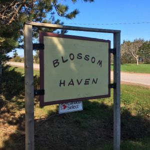 Hotel Pictures: Blossom Haven - Brackley Beach, Prince Edward Island, Brackley Beach