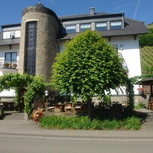 Hotelbilleder: Hotel Zum Schleicher Kuckuck, Schleich