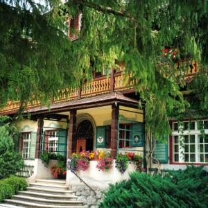 Hotel Pictures: Jagdschloss Graf Recke, Wald im Pinzgau