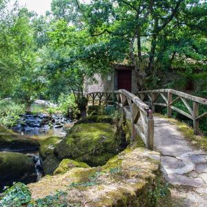 Hotel Pictures: Village de Gîtes du Moulin Neuf, Gétigné