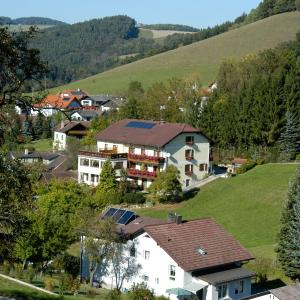 Fotos de l'hotel: Genießerpension Dopler - Zur schönen Au, Bad Schönau