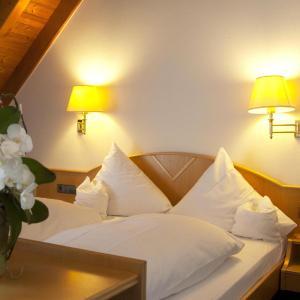 Hotel Pictures: Hotel-Restaurant Hirsch, Berghaupten