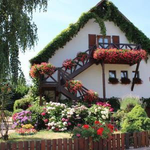 Hotel Pictures: Apartment Route du Vin Centre Alsace, Orschwiller