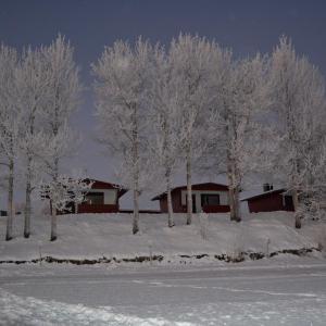 Hotel Pictures: Saarituvat Cottages, Rovaniemi