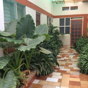 Hotellbilder: Hotel Montezuma Pacifico, Montezuma