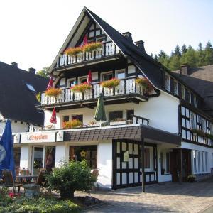 Hotel Pictures: Pension & Ferienhaus Latröpchen, Schmallenberg