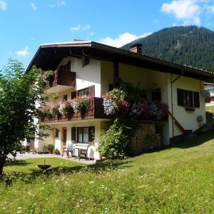 Hotel Pictures: Haus Patria, Sankt Gallenkirch
