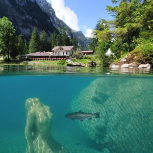 Hotel Pictures: Hotel Blausee, Blausee