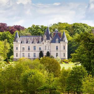 Hotel Pictures: Château des Tesnières, Torcé