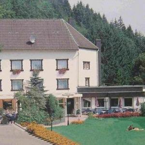 Hotelbilleder: Hotel Grenzbachmühle, Horhausen