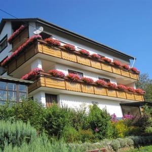 Hotel Pictures: Pension Hildegund, Lauterbach