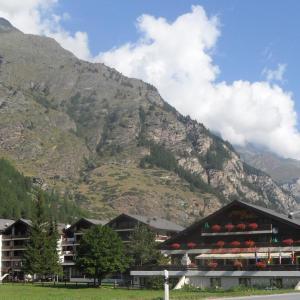 Hotel Pictures: Appartements Monte Rosa, Täsch