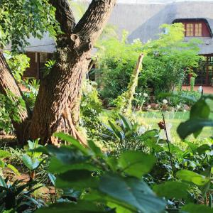 Hotel Pictures: Foreigners Friend Guest House, Pretoria