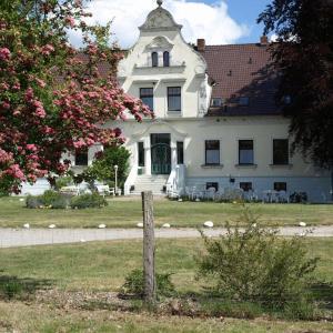 Hotel Pictures: Hotel Pension Gutshaus Neu Wendorf, Sanitz