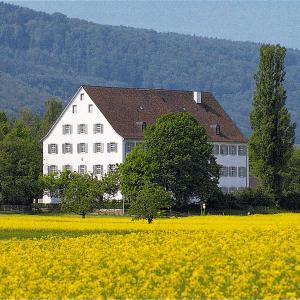 Hotel Pictures: Hotel Kurhaus Kreuz, Mariastein