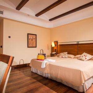 Hotel Pictures: Abades Guadix, Guadix