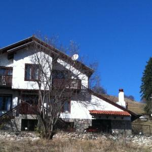 Foto Hotel: Villa Rigel Pamporovo, Progled