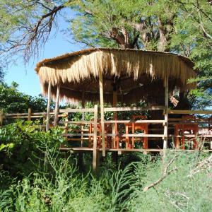 Фотографии отеля: Hostal Rincon de Quitor, Сан-Педро-де- Атакама