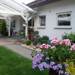 Hotel Pictures: Villa Stumpf, Friesenheim