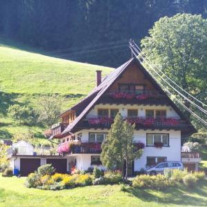 Hotel Pictures: Gästehaus Schoch, Bad Rippoldsau-Schapbach