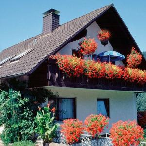 Hotel Pictures: Haus Huber, Bad Peterstal